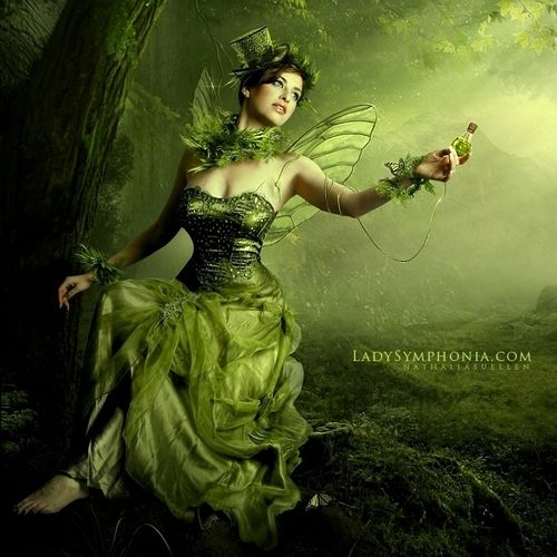 Green Absinthe Fairy Gothic Costume Dark Fairy Costumes Mr Costumes500 x 500 | 198.7 KB |  sc 1 st  Pinterest & Green Absinthe Fairy Gothic Costume Dark Fairy Costumes Mr ...