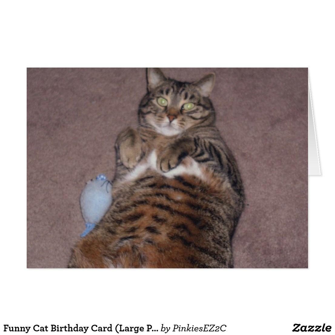Funny Cat Birthday Card Large Print