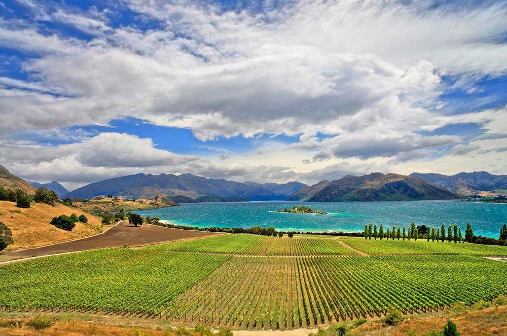 Los fotos que dan ganas de viajar a Nueva Zelanda