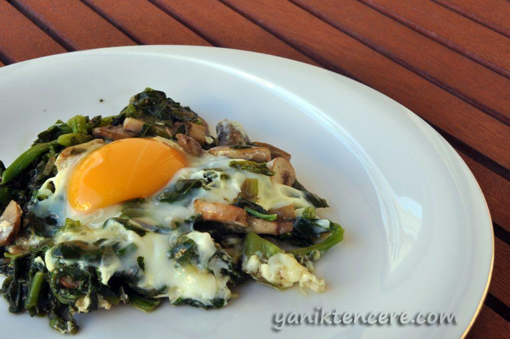 ıspanak ve mantarlı yumurta