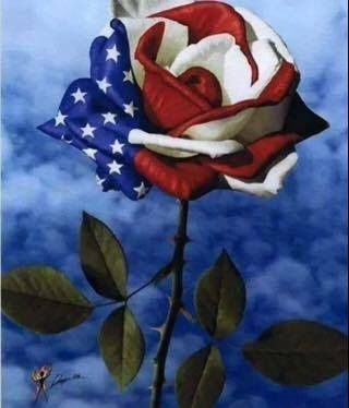 Veterans Site Roses Are Red Violets Are Blue The Usa Is Amazing And Her Troops Are Too Proudamerican Art Painting Memorial Day
