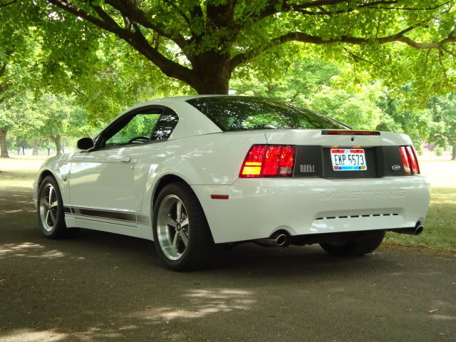 Looking For Pics Of 315 35 17 Tires On Afs 10 5 Wheels 2003 04 Mach 1 Registry Owners Club Ford Mustang Cobra