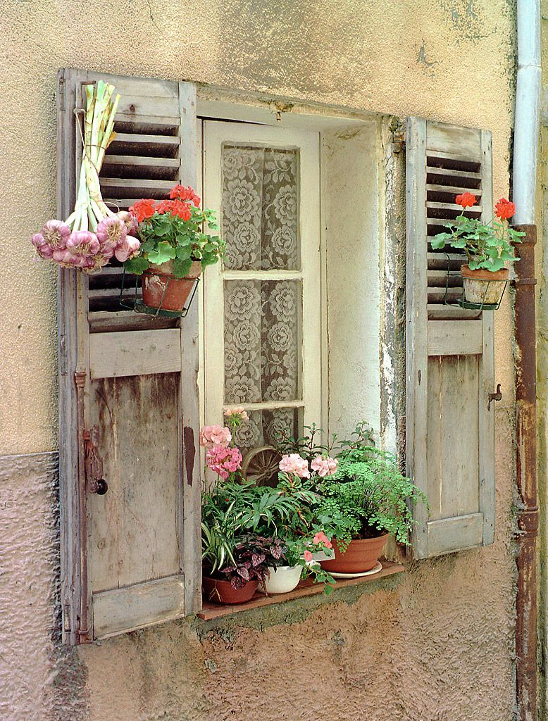 Window With Garlic Antibes Provence France Windows Doors