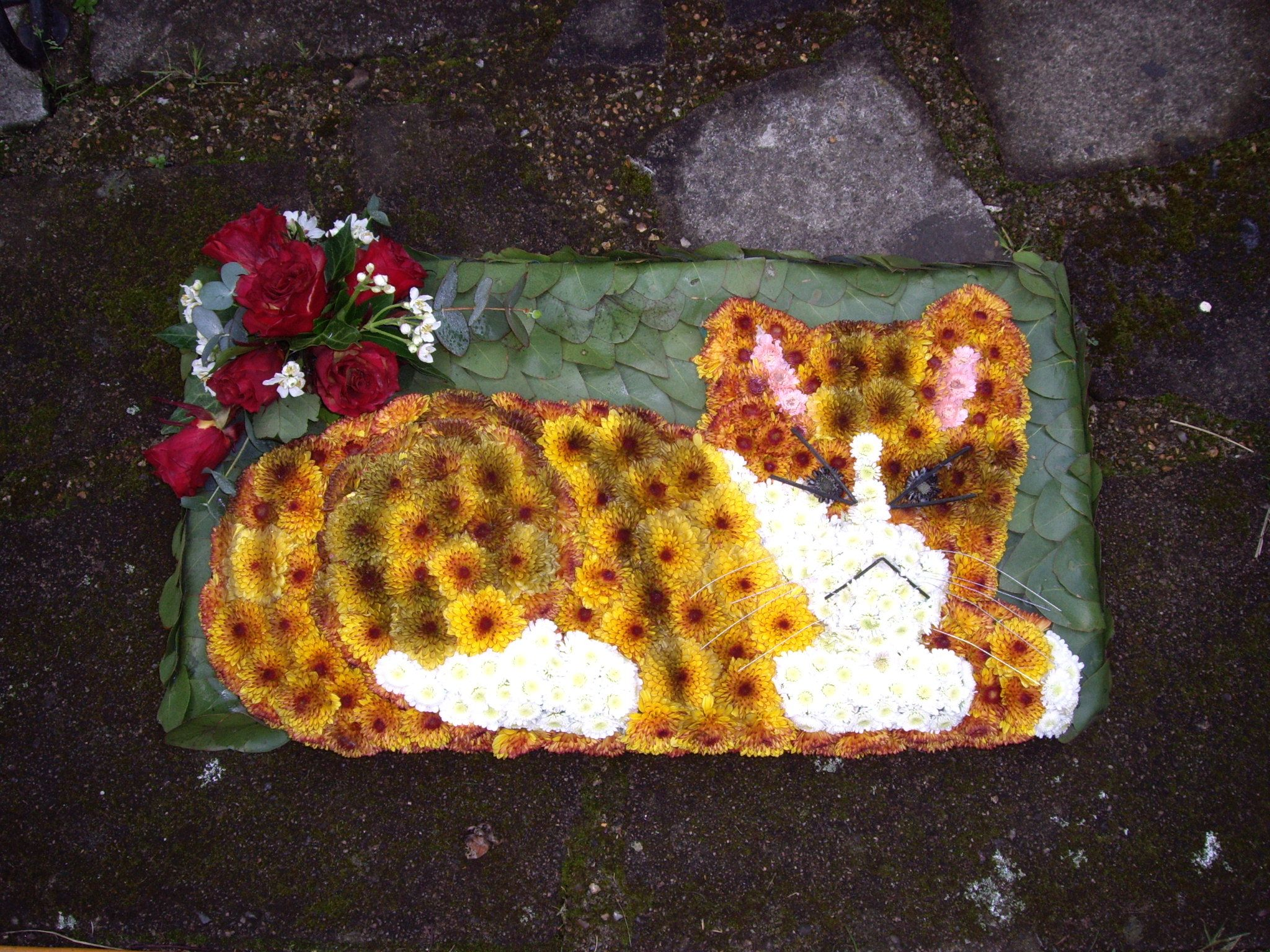 Floral cat sympathy flowers pinterest west london west london flowers specialise in stunning wedding flowers bespoke funeral flowers and flowers for any occasion with over 20 years experience izmirmasajfo Images