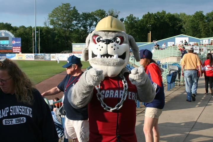 Scrappy The Bulldog Mahoning Valley Scrappers Mascot Class A