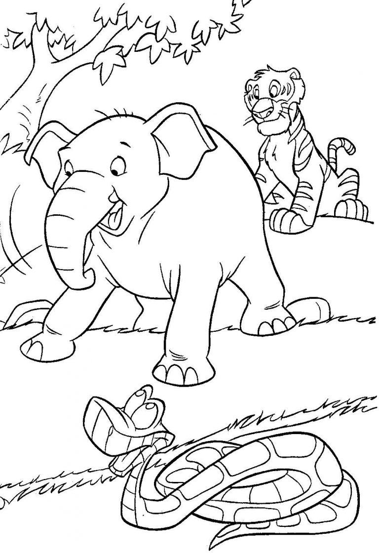 Jungle Coloring Pages In The Jungle Pinterest Jungle Coloring
