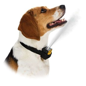 Petsafe Gentle Spray Bark Control System Citronella Spray Bark Collar From Petco Com Dog Bark Control Dog Barking Bark Collars For Dogs