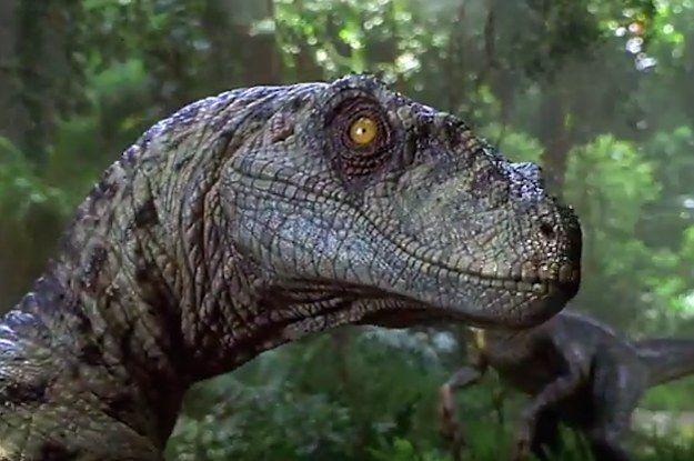 Show Us Your Jurassic Park Dinosaur Knowledge And We'll Tell You If You're Actually Fit To Be A Paleontologist