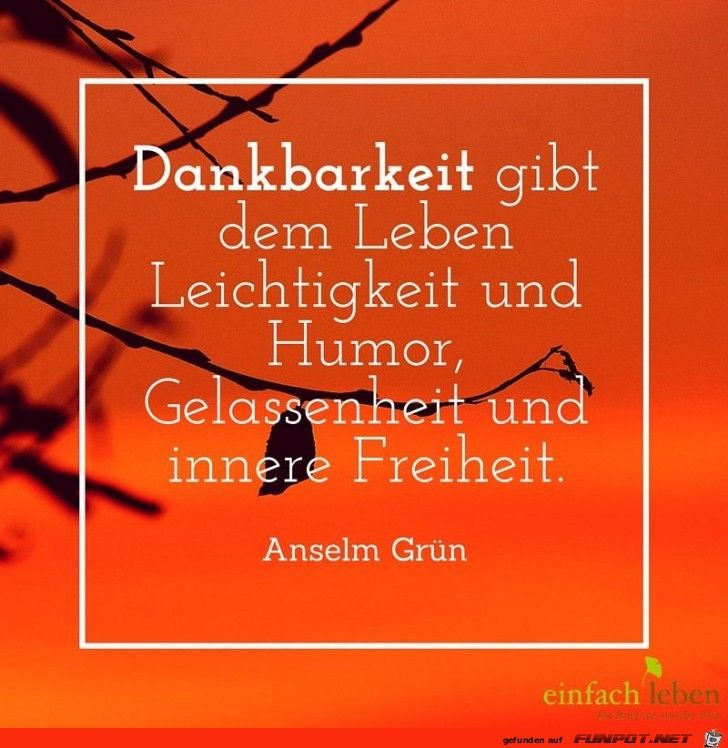 Dankbarkeit | Zitate | Quotations, Quotes und Cool words