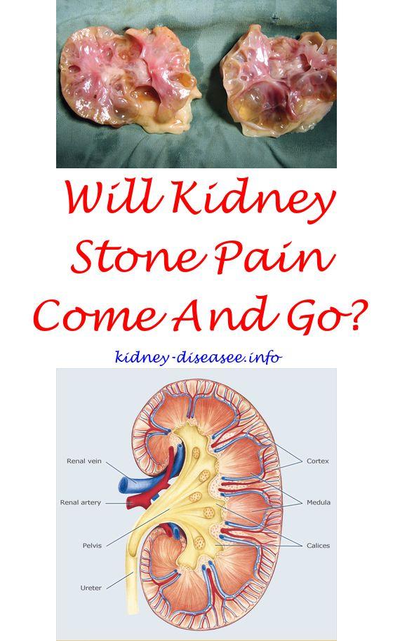 Kidney Disease Symptoms | Kidney disease, Human kidney and Pain relief