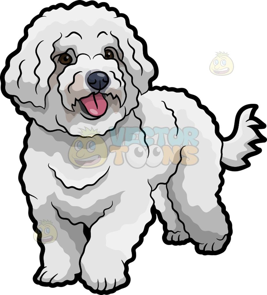 A Cute Bichon Frise Pet Dog Wagging Its Tail Dog Drawing Bichon Frise Drawing Dog Illustration