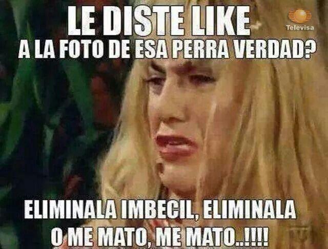 Celostina Frases Divertidas Spanish Humor Sarcastic Humor Y