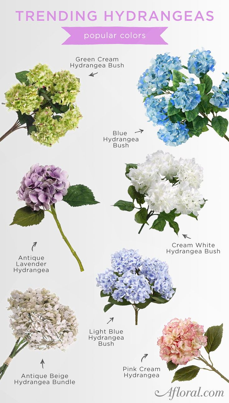 Hydrangeas Are Trending This Wedding Season Shop Afloral Com For Flowers That Last Hydrangea Flower Artificial Flowers Flowers Bouquet