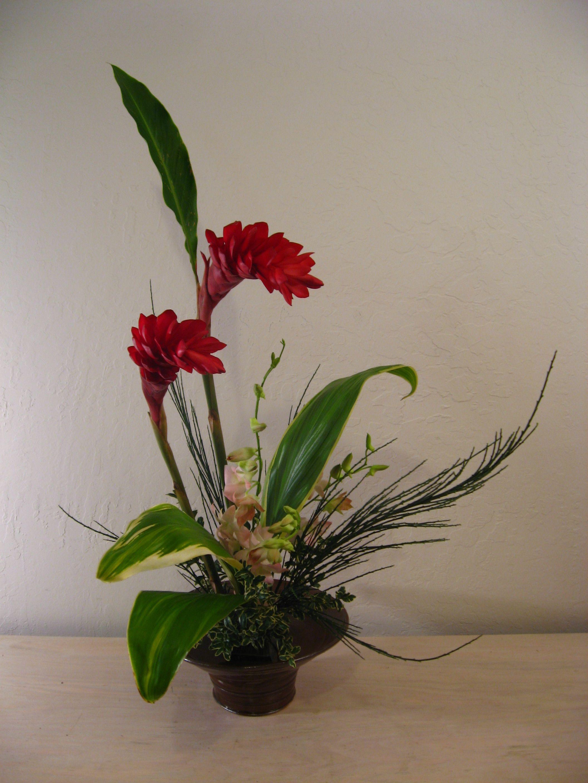 Ginger ikebana pinterest flowers and gardens