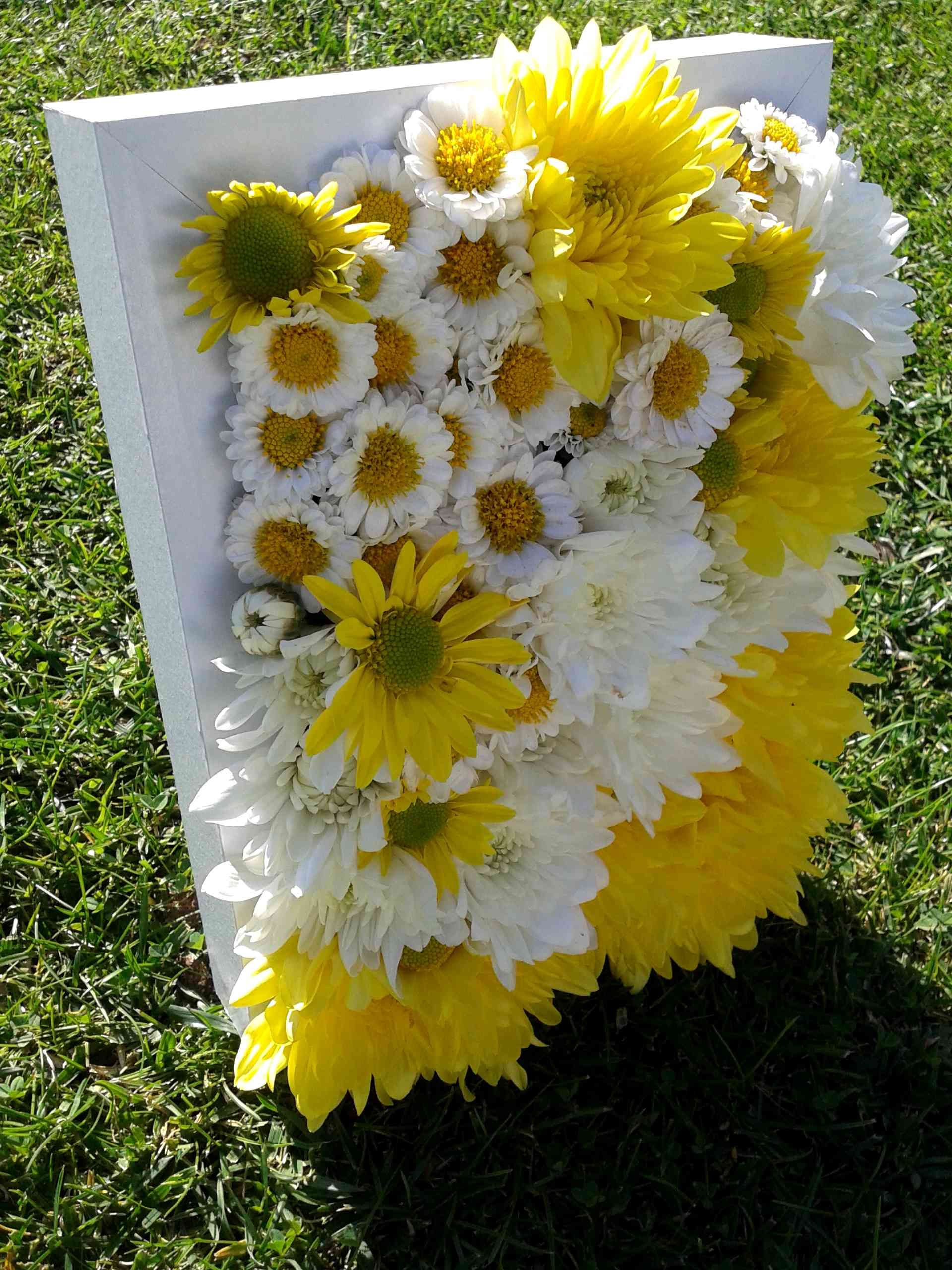 Crisantemos en marco de foto blanco. | Flowers | Pinterest ...