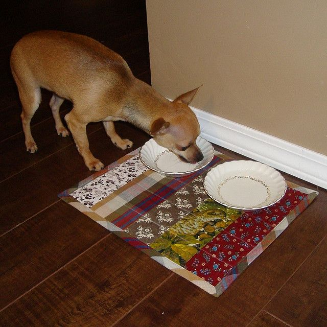 Doggie Placemat, inspired by the Towel Rug project in Amanda Soule's Handmade Home.
