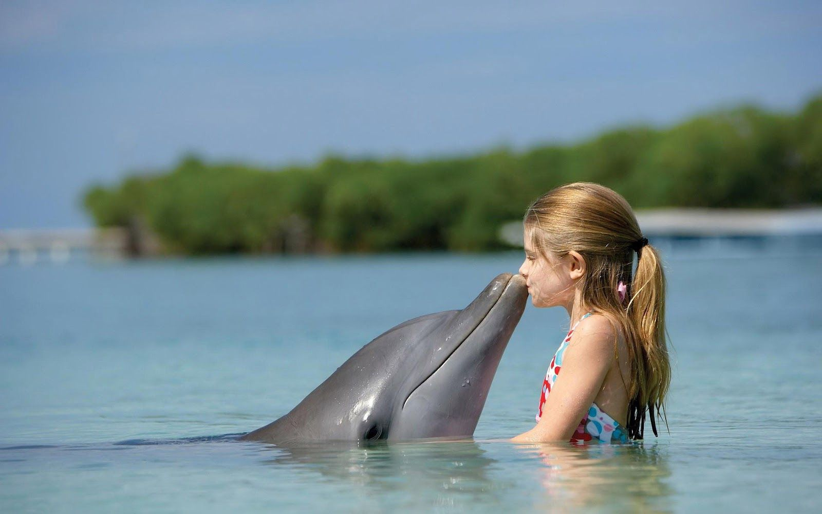 Dolphin Kissing A Little Girl Http Ift Tt 2hfygup Dolphin Images Carnival Cruise Animal Wallpaper