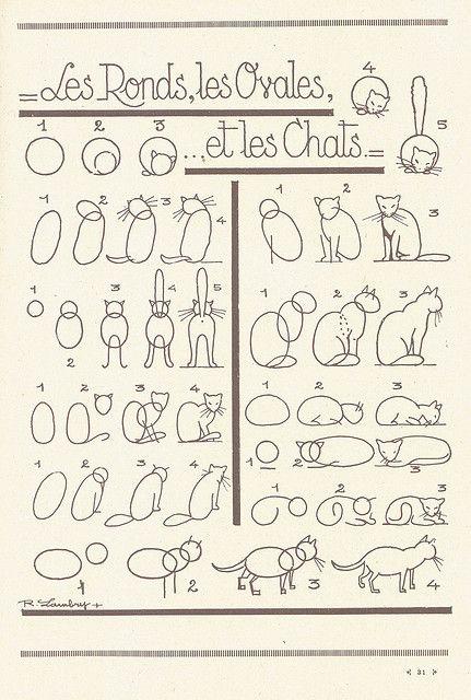 Desenho simples - gatos