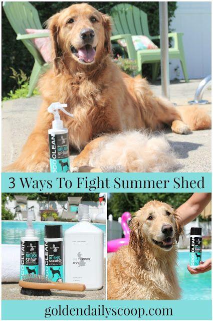 3 Ways To Help Fight Summer Shedding Summer Sheds Summer Dog