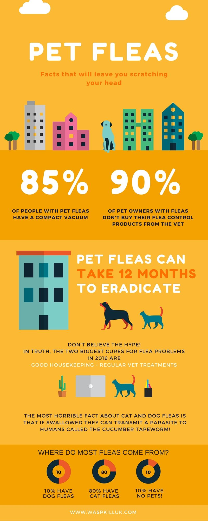 Facts About Fleas Moving To The Uk Moving To England Travel Jobs
