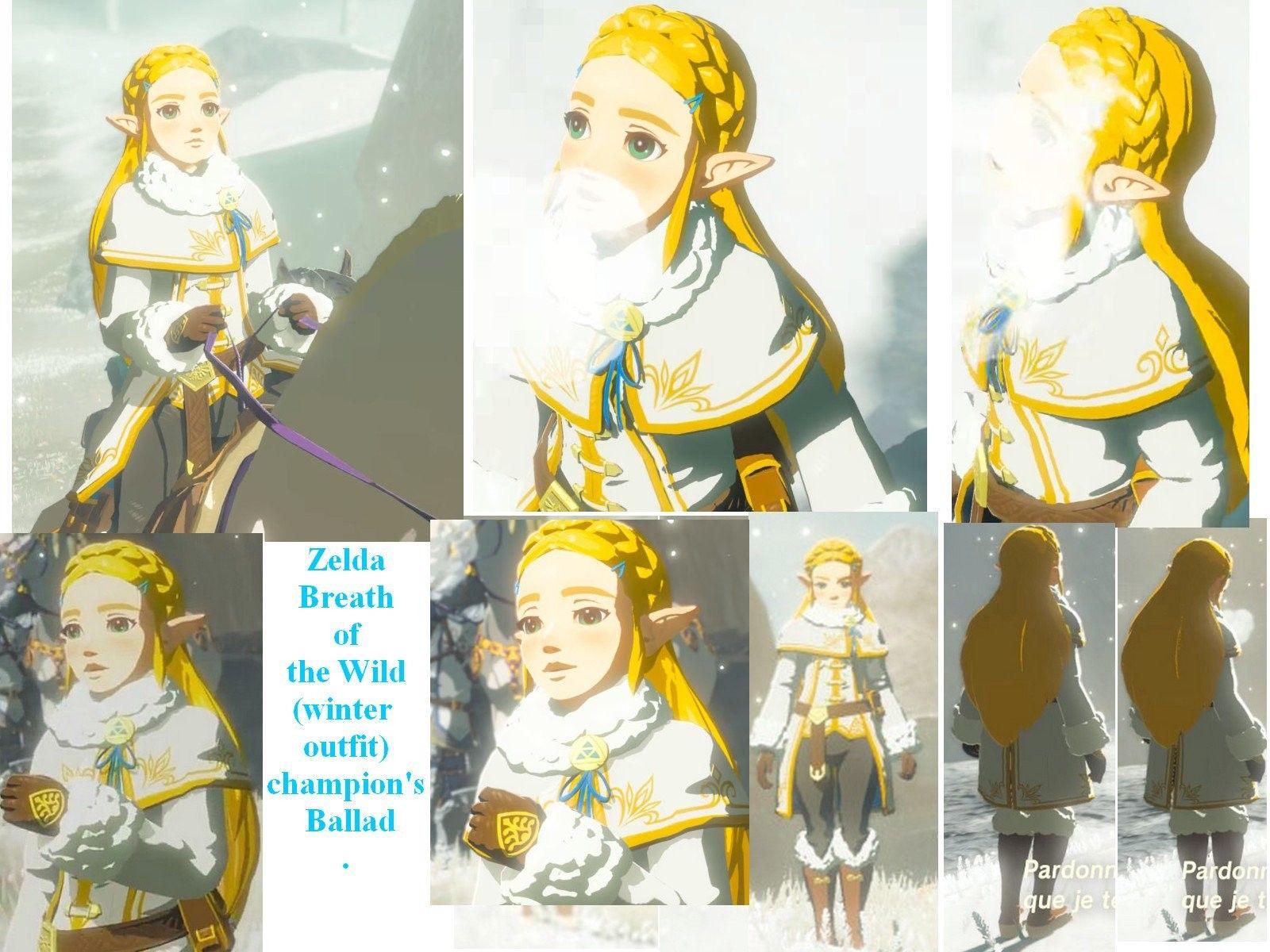 Zelda Botw Winter Outfit Dlc Wild Outfits Princess Zelda Breath Of The Wild