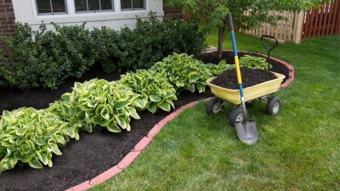Photo of Learn how to landscape on the cheap wirh these inexpensive landscaping ideas for…