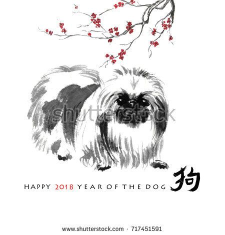 Year Of Dog Greeting Card Chinese New Year Symbol A Pekingese And