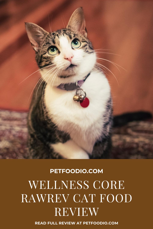 Wellness Core Rawrev Cat Food Revved Up Raw Petfoodio Com In 2020 Animals Cats Cat Food