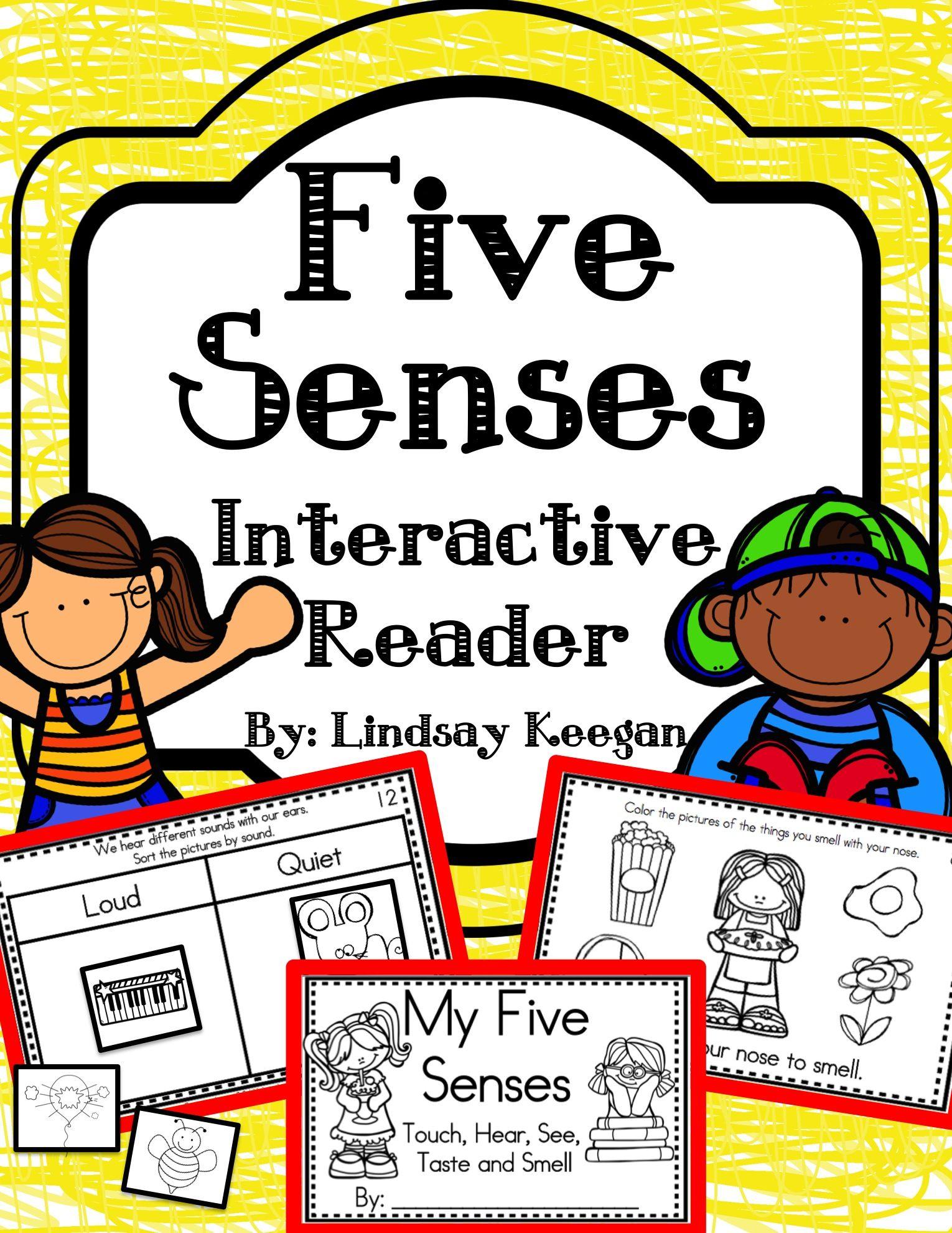 Five Senses Interactive Reader