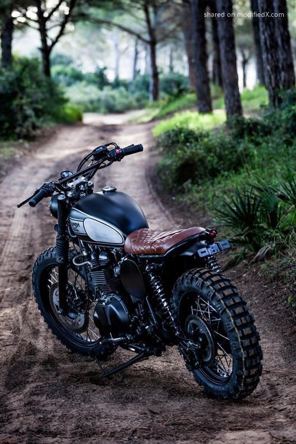 triumph bonneville t100 scrambler kaufen. Black Bedroom Furniture Sets. Home Design Ideas