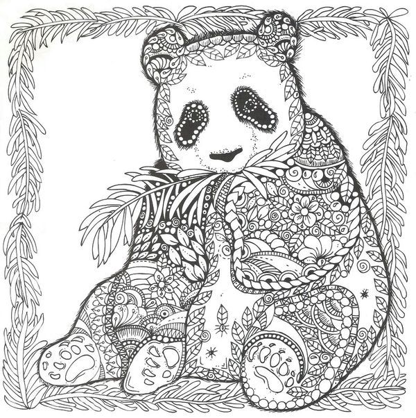 zentangle panda bear bear coloring