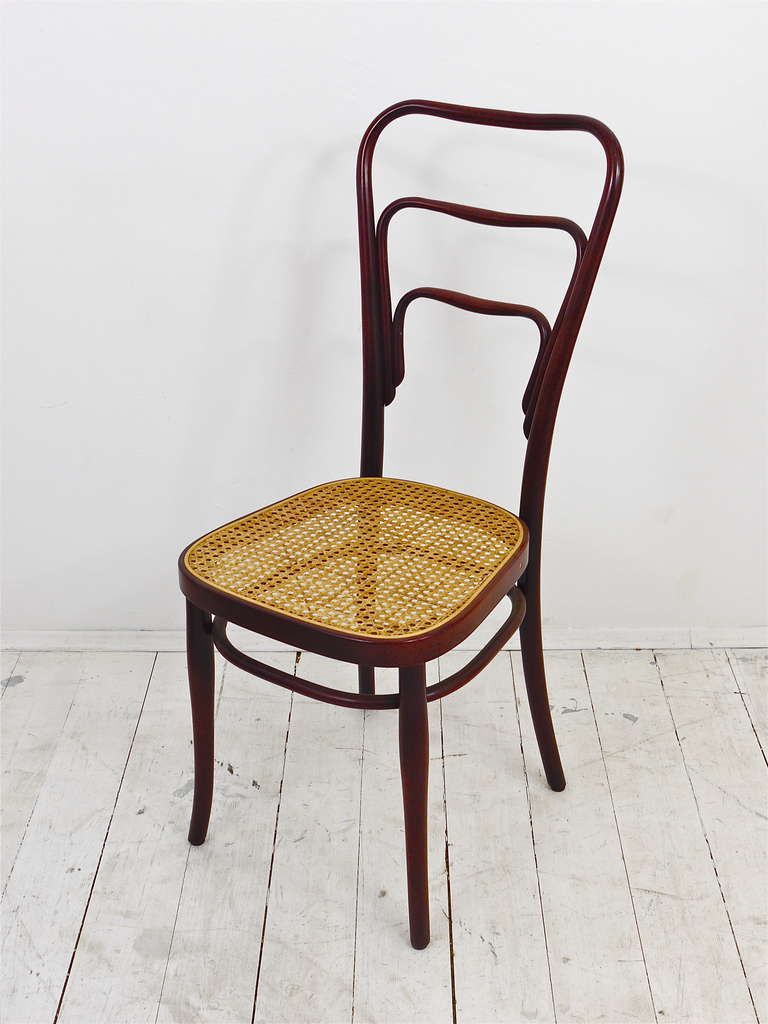 Set Of 6 Adolf Loos Thonet Vienna Caf Museum Art Nouveau Bentwood  # Adolf Loos Muebles