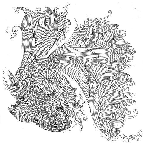 peces luchadores japoneses - libro para colorear acuario - Richard ...