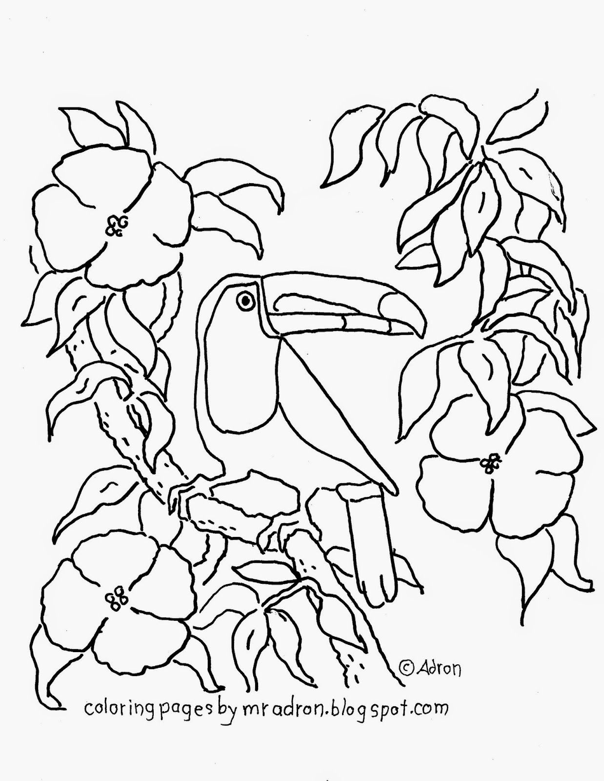 Toucan Coloring Page See More At My Blog Http