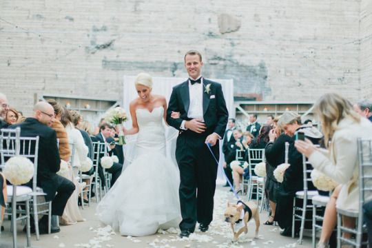 Winter White Wedding In Arizona White Winter Wedding Arizona Bride Pet Wedding Attire