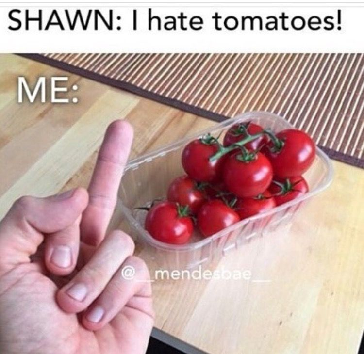 Shawn Mendes Frank Memes