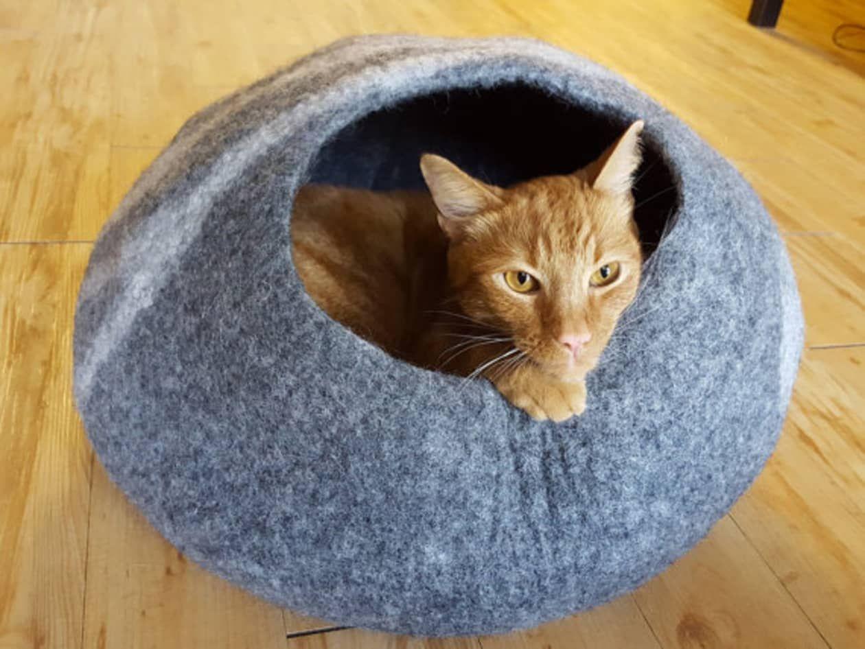 9 Things DesignObsessed Cat Lovers Need in Their Home
