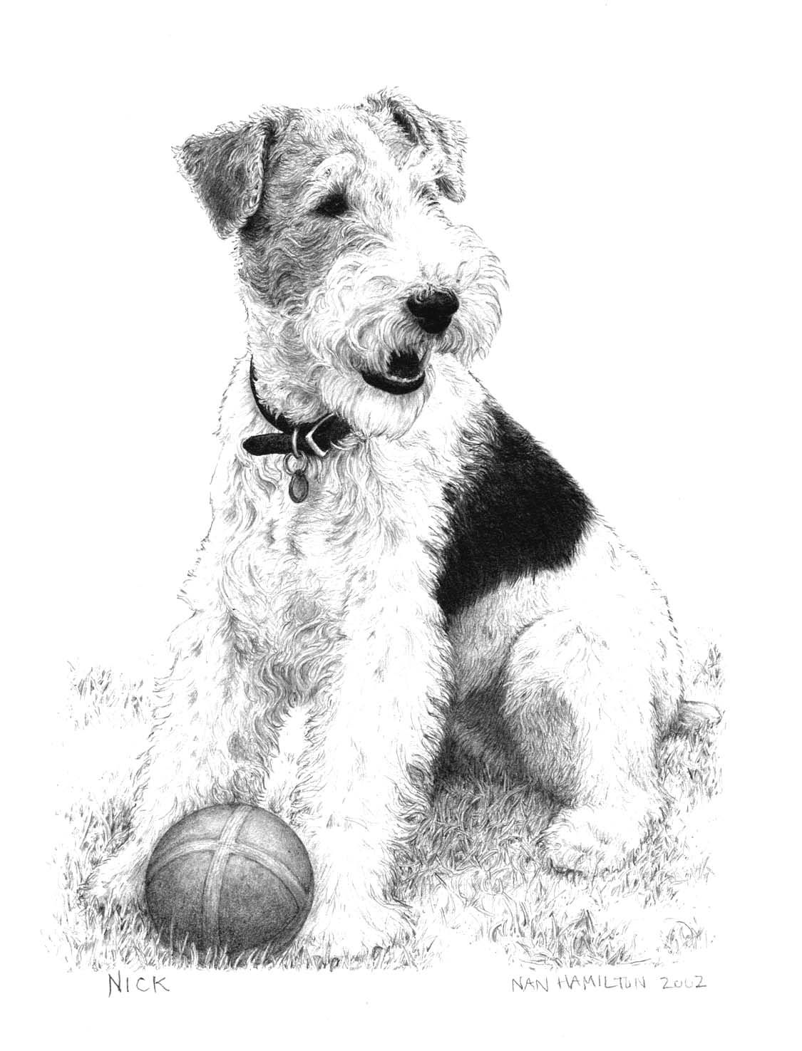 Pin by Phyllis Rollins on Puppies | Pinterest | Fox terriers ...