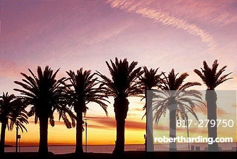 Sunrising in the Croisette, Cannes, Alpes-Maritimes, French Riviera, Provence-Alpes-Cote dAzur, France