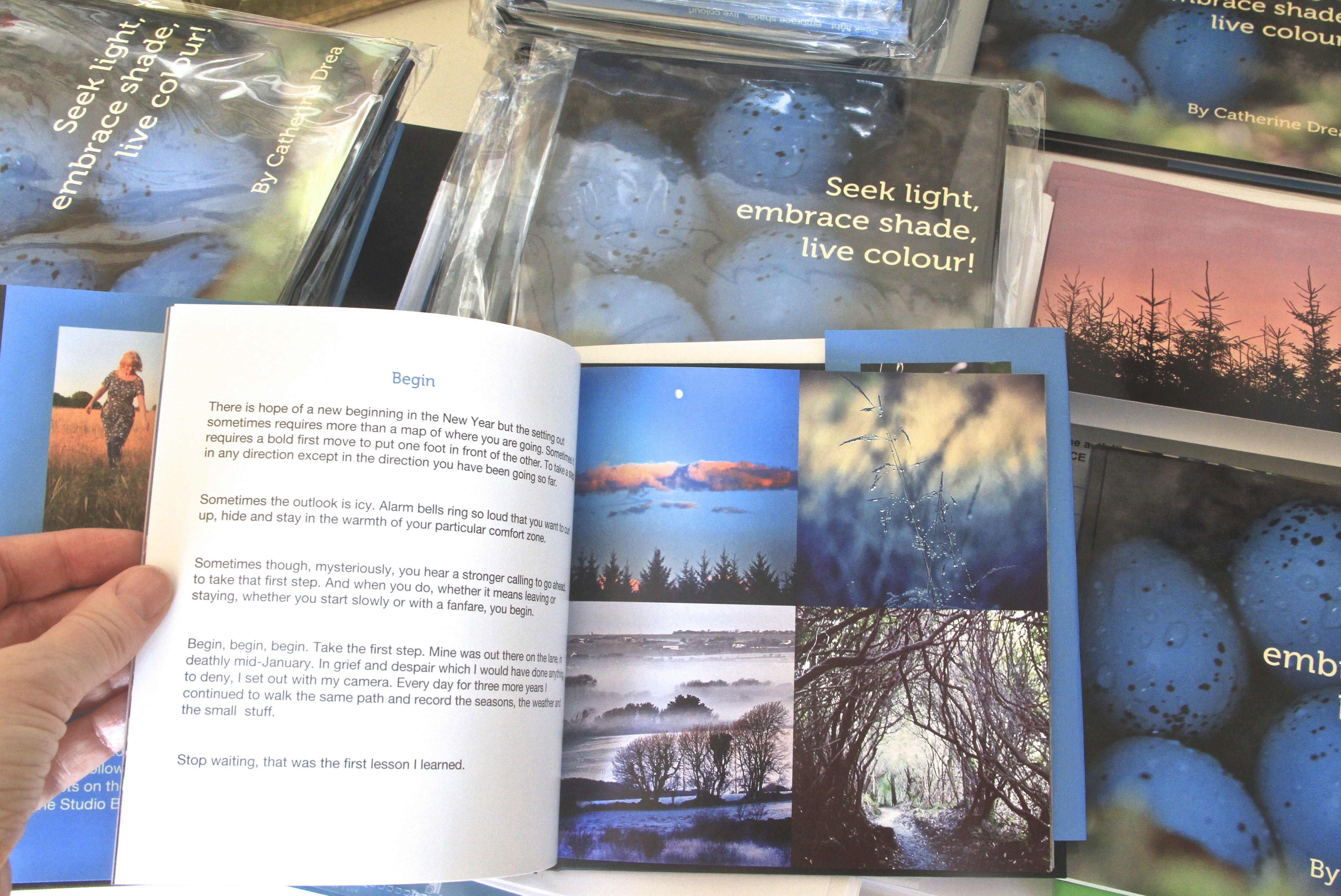 irish christmas gift ideas irelands foxglove lanes book seek light embrace shade live colour