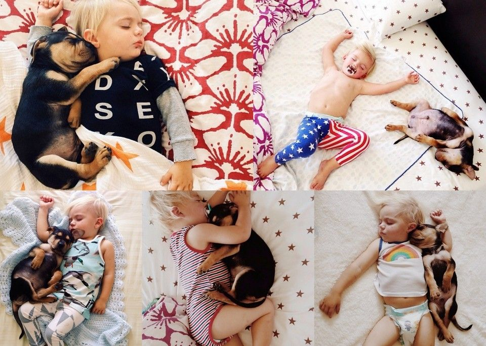 Toddler Napping With Puppy Google Search Clothes For The Girls - Toddler naps with puppy