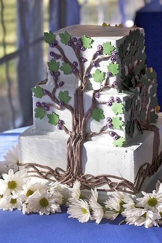 Matt & Katherine's Wedding - the cake (spring) by qwrrty, on Flickr