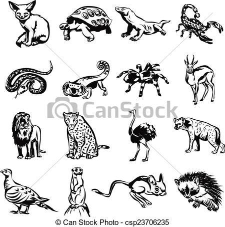 animales del desierto dibujos  Buscar con Google  africa