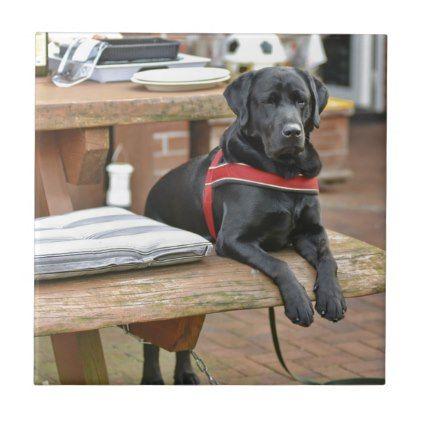 Customizable Black Labrador Retriever Tile Labrador Retriever Puppy Labradors Dog Dogs Pet Pets Labrador Retriever Black Labrador Retriever