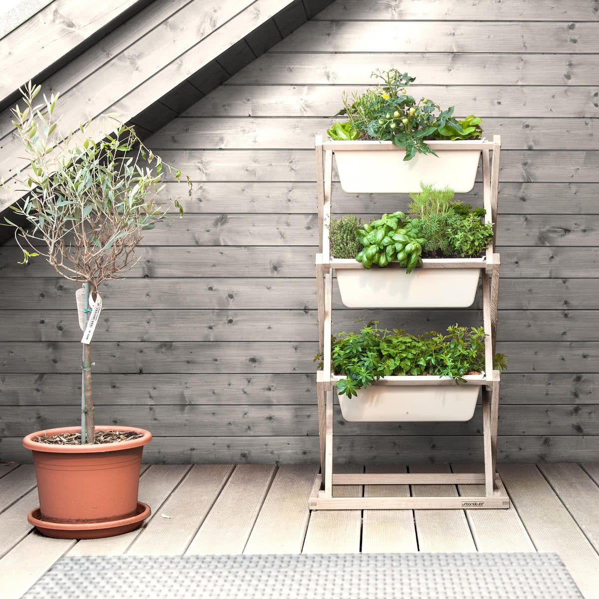 The Vertical Garden By Urbanature In The Shop