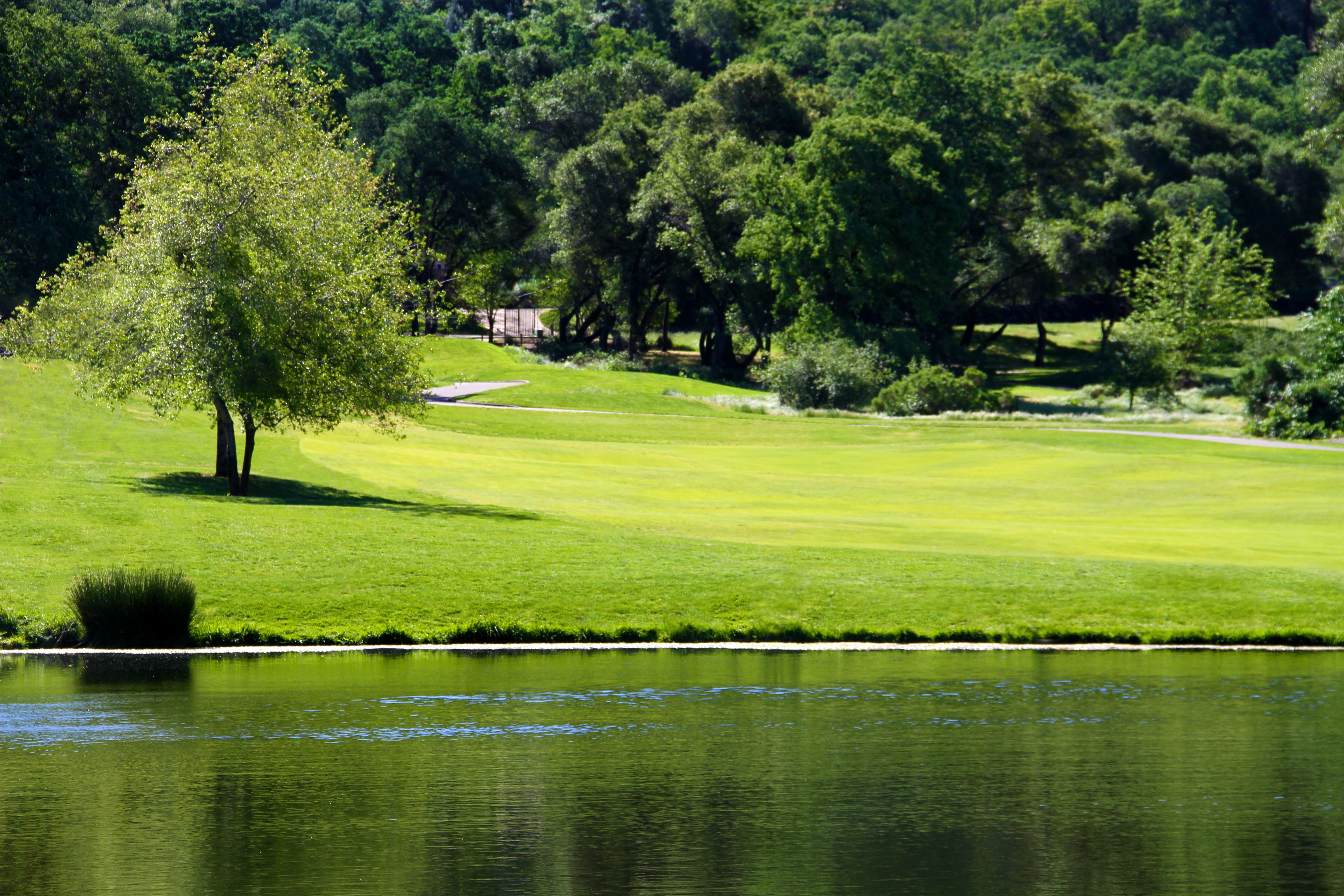 Whitney Oaks Golf Club. | California's best golf courses | Pinterest | Golf and Golf clubs