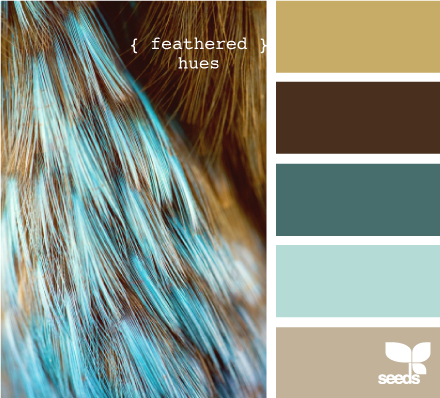 I See The Light Blue As A Kitchen Color Top Brown Wall In Living Room And Id Love To Use Dark On Floors