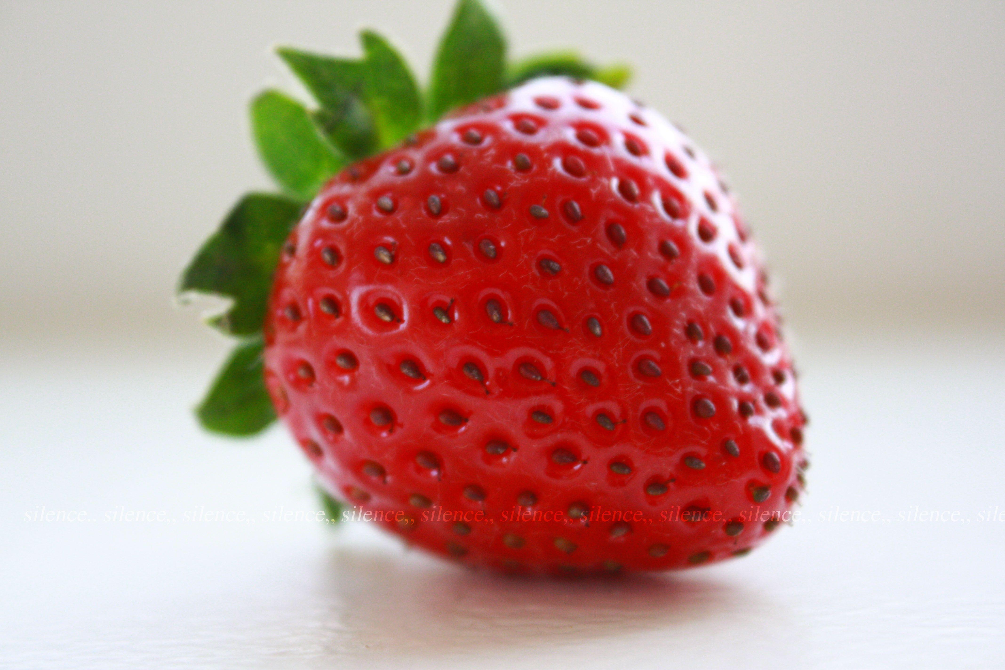 Fresa o Strawberry (Ingles)