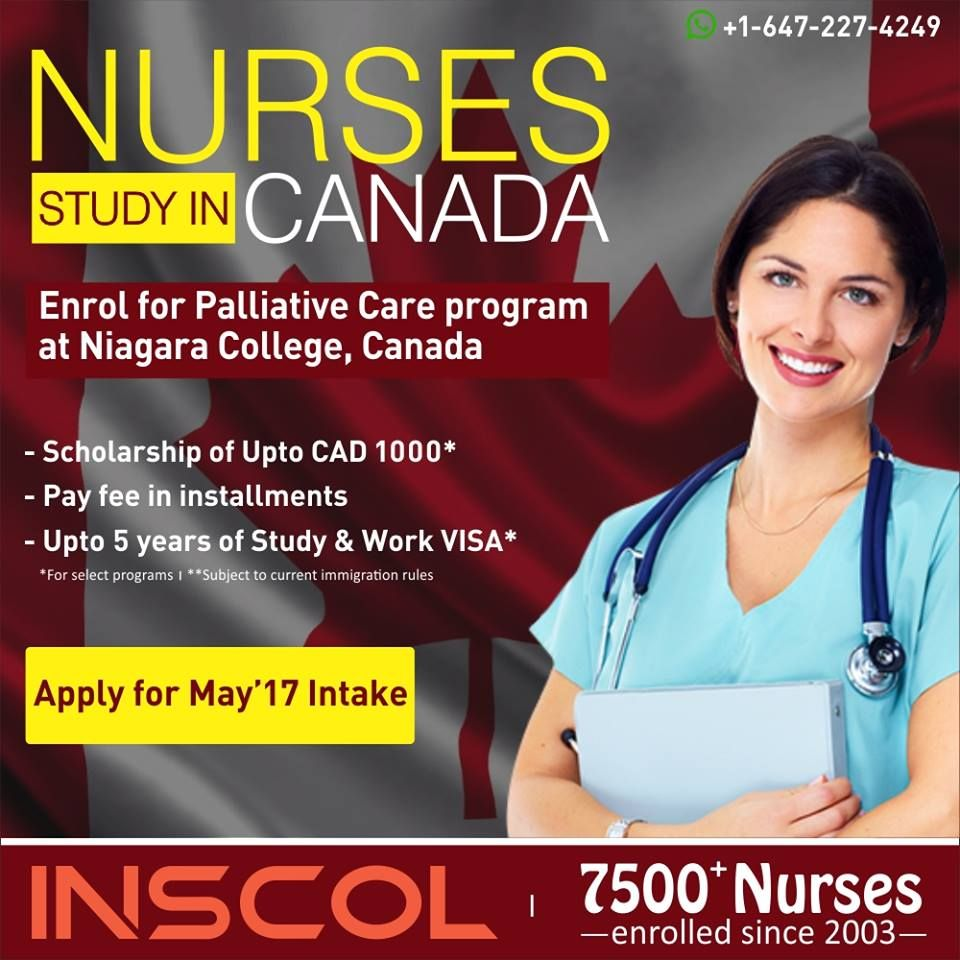 Nurses Grab The Opportunity To Be Enrolled In Palliativecare Program Inscol Is The Leading Provider Of Nursing Programs Nursing In Canada Nursing Courses
