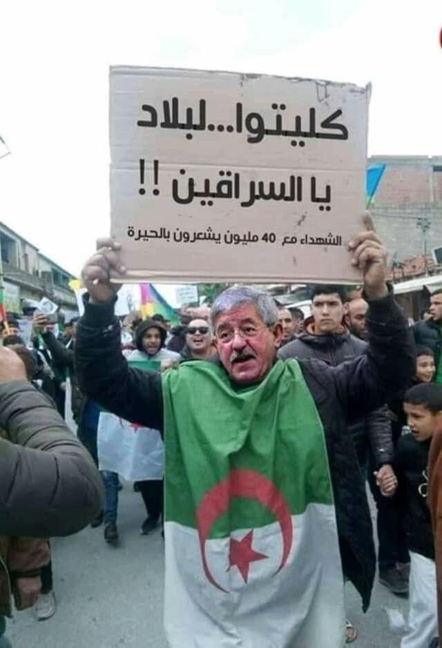 Histoire Algerie Photo Algerie Alger